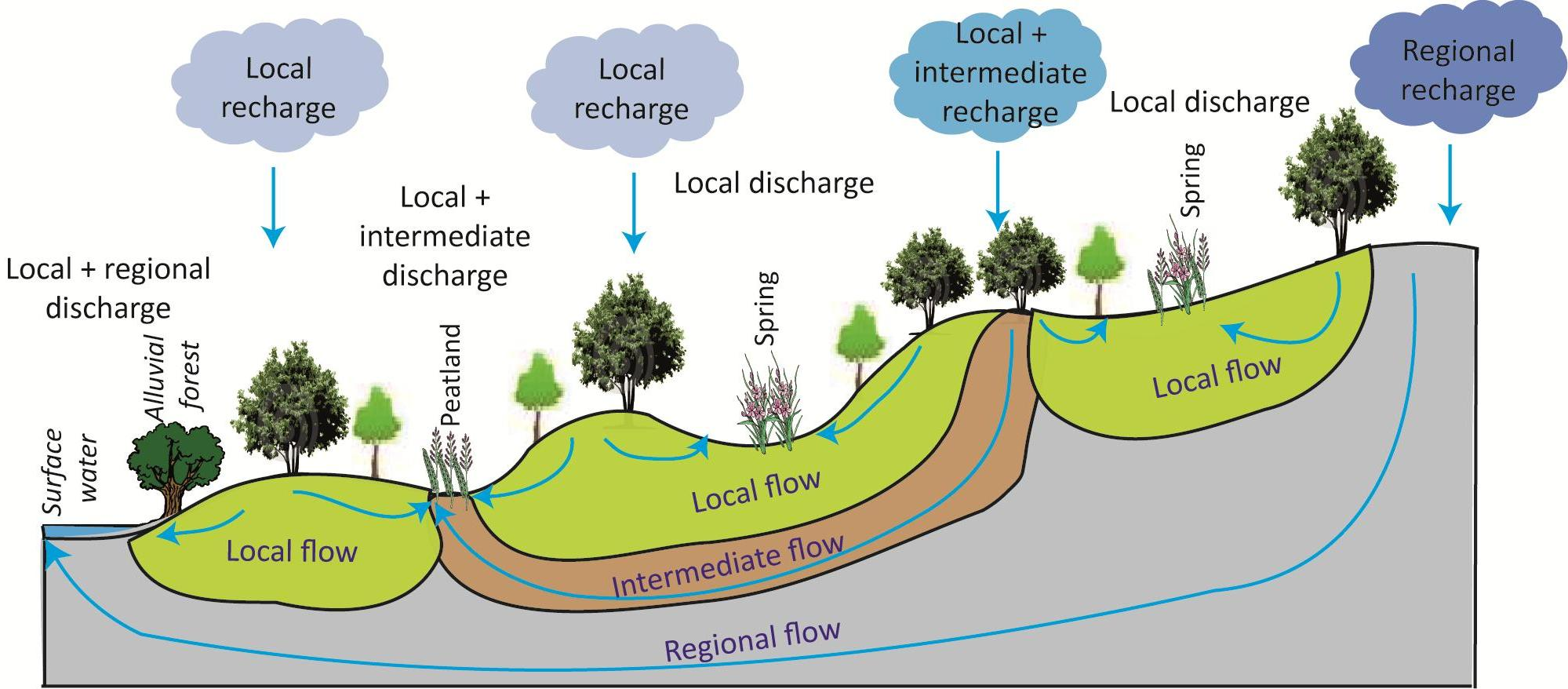 Image Groundwater Ecology
